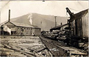 Leonard Harrison State Park - A lumber mill in Asaph, in the Pine Creek watershed – few trees remain on the mountain behind