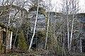 Astangu pank. Põhja-Eesti klint (16).jpg