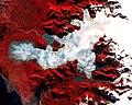 Aster patagonia glacier lrg.jpg