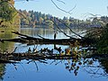 At Lost Lagoon - Stanley Park - Vancouver - BC - Canada - 09 (37973667051) (2).jpg