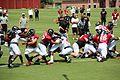 Atlanta Falcons training camp scrimmage, July 2016 4c.jpg