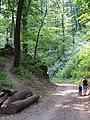 Aufstieg Burgruine - panoramio.jpg