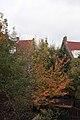 Autumn - panoramio (22).jpg