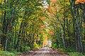 Autumn Dirt Road - Hiawatha National Forest, Michigan (30354315253).jpg
