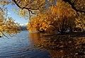Autumn at Lake Tekapo NZ (22) (8670108189).jpg