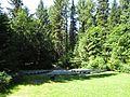 Avalanche Creek Amphitheater - 4 (7685074994).jpg