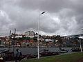Avenida Diogo Leite (14401837302).jpg