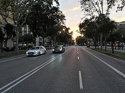 AvingudaDiagonal.jpg