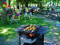BBQ in Angrignon park - panoramio.jpg