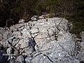 BLOKLU YAPININ İNCELENMESİ VE OCAK YERİ TESBİTİ - panoramio.jpg