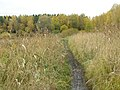 Balashikha, Moscow Oblast, Russia - panoramio (11).jpg