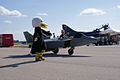 Bald Eagle Mascot with Electric Raptor RFront TICO 16March2014 (14486529468).jpg