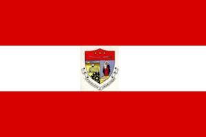 Coronel Oviedo - Image: Bandera de Coronel Oviedo
