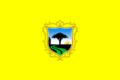 Bandera de San Borja.png