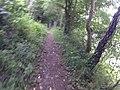 Bangor, UK - panoramio (427).jpg