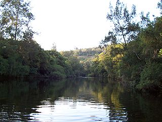 Barrington River (New South Wales)