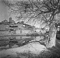 Bassa Alcarraz (cropped).jpeg