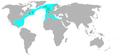 Basstölpel (Sula bassana) world.png