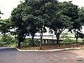 Bauru - SP - panoramio (53).jpg