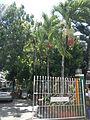 Bay,Lagunajf4090 03.JPG
