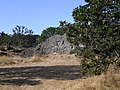 Beacon Hill Park (16.08.06) - panoramio - sergfokin (5).jpg