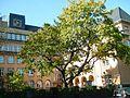 Beckmann schule p 023.jpg