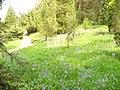 Bedgebury Pinetum - geograph.org.uk - 796135.jpg