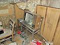 Beelitz Heilstätten -jha- 300393684437.jpeg