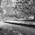 Begraafplaats, overzicht - Leiden - 20135920 - RCE.jpg
