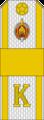Belarus MIA—22 Cadet-Senior Sergeant rank insignia (White).png