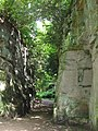 Belsay Hall - Quarry Garden (3) - geograph.org.uk - 1479385.jpg
