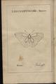 """Berger-Perrière, J. Aug., """"Introduction à l'histoire naturelle des insectes, en forme d'entretiens (...)"""".png"""