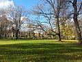 Bernardinai garden 3.jpg