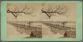 Beverly Bridge, from Robert N. Dennis collection of stereoscopic views.png