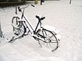 Bicycle in Amsterdam after heavy snow - 10.jpg