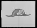 Bikorn hovfurir - Livrustkammaren - 19279.tif