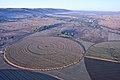 Bill Harrop's Balloon Safaris, Hartbeespoort, North West (19910236764).jpg