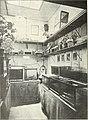 Blätter für Aquarien- und Terrarien-Kunde (1908) (20198976000).jpg