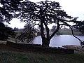 Blenheim Park 02.jpg