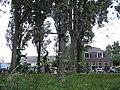 Bloemencorso Westland - Delft - 2009 - panoramio.jpg