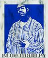 Blue Marley.jpg