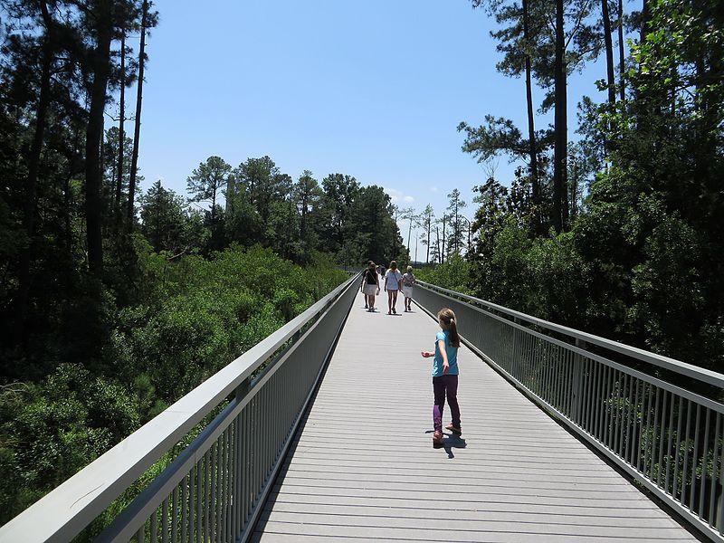 File:Boardwalk to Historic Jamestowne, Colonial National Historical Park, Jamestown, Virginia (14445687773).jpg