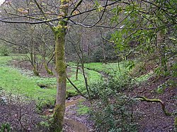 Boggart Hole Clough Brook - geograph.org.uk - 4333.jpg