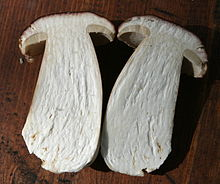 Both halves of a thick-stemmed bisected mushroom.