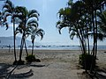 Bom Dia pescadores de Perequê - panoramio.jpg