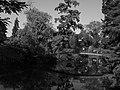 Bordeaux Jardin Public Vue n°8.jpg
