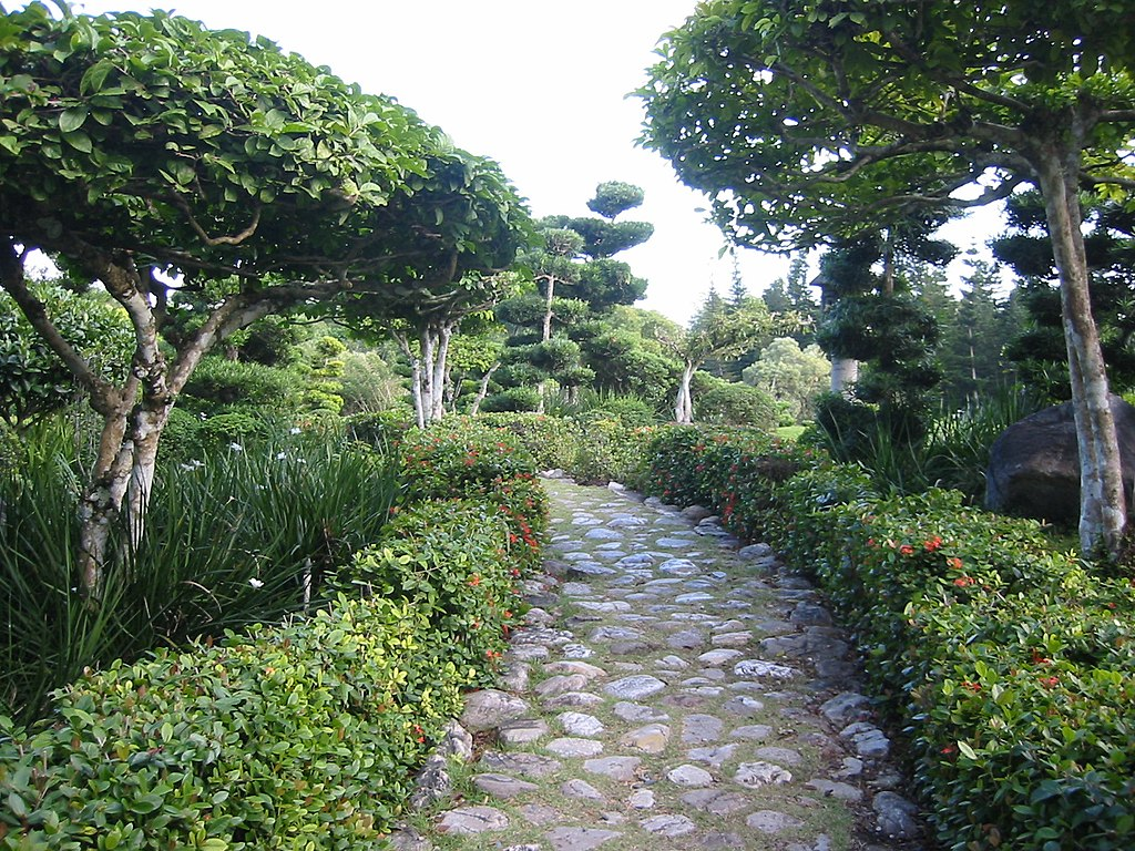 File botanischer garten santo wikimedia commons for Botanico jardin