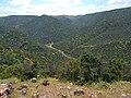 Bouachouch forest. Ait mimoun. Khemisset 7.jpg