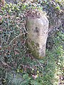 Boundary Stone, Scosthrop - Airton - geograph.org.uk - 617306.jpg