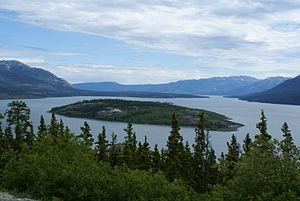 Tagish Lake - Bove Island on the Tagish Lake